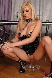 Collar leash