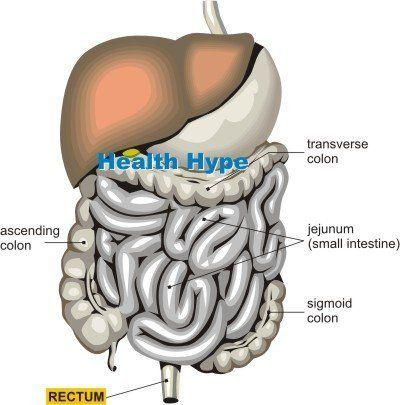 best of Stomach lower anus leading to in Pain