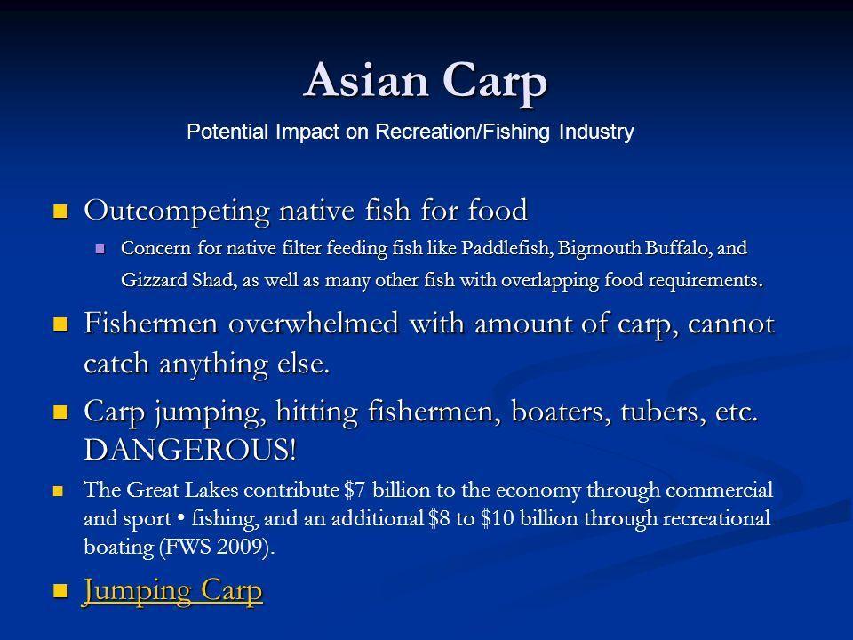 Snow W. reccomend Asian carp native home
