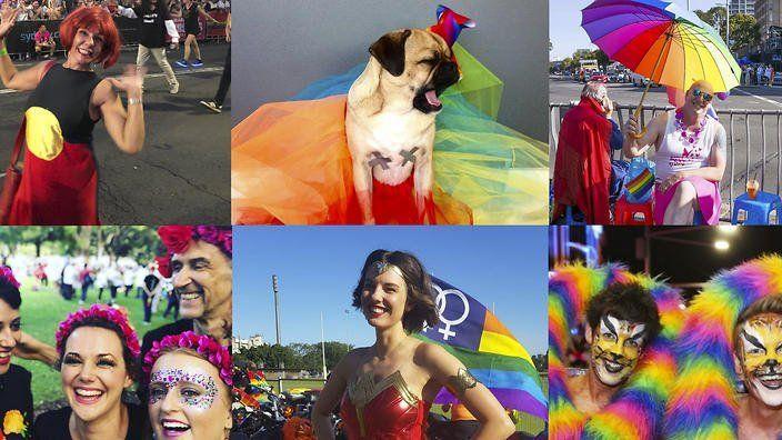 Retrograde reccomend Glt gay lesbian times news classifieds