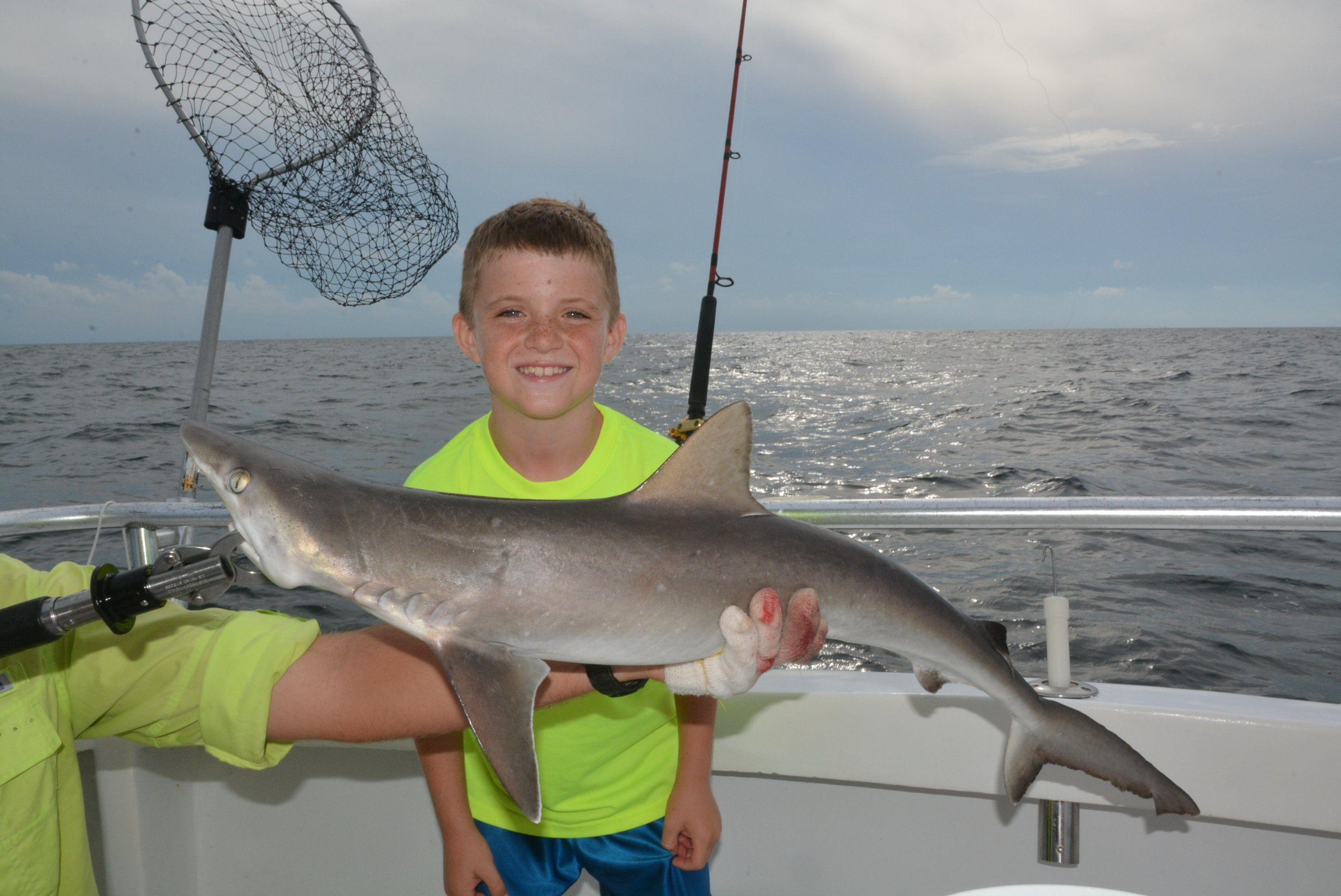 Star reccomend Bottom deep fishing pensacola sea