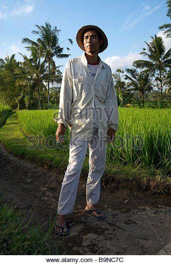 best of Rice picture Asian farmer