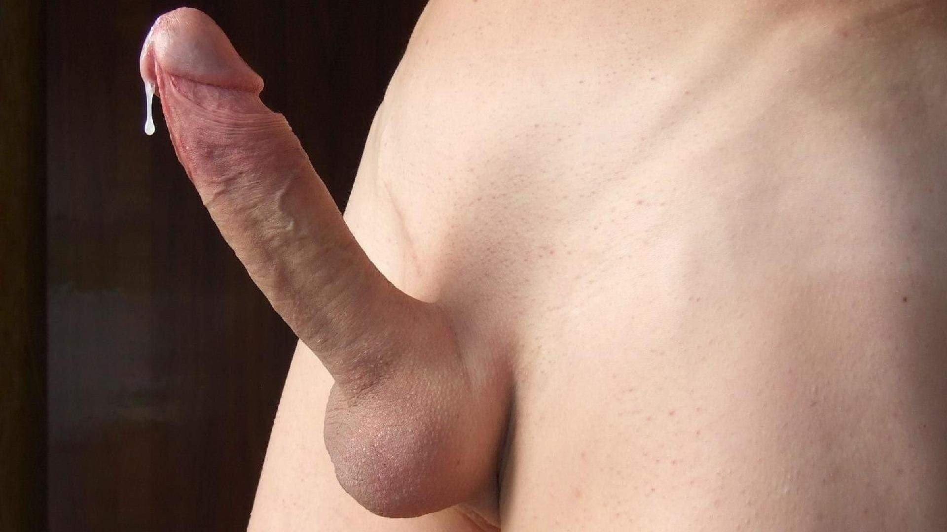 Shaved gay biggest dick tumblr